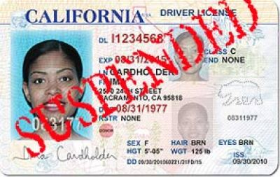 Driver's license amnesty: Reinstate your suspended DL before