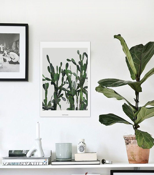 decorating with plant life / sfgirlbybay