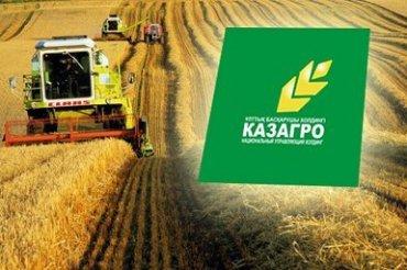 Американцы построят зернохранилища в Казахстане