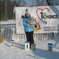 Соревнования Новичков, 16.02.2013 г.