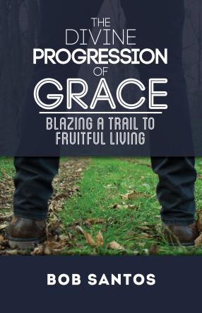 The Divine Progression of Grace Cover