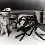 The Biology of B-Movie Monsters