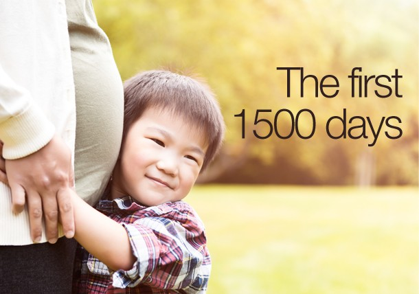 nutrition in the first 1500 days