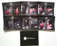 BEAST GOOD LUCK BOX - Midnight Sun Card Sticker Set