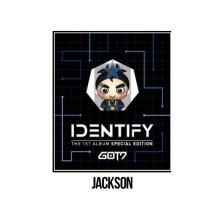 GOT7 Vol.1 – Identify (USB Special Edition)(Jackson)