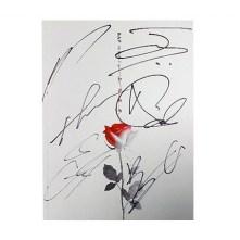 Official Autographed B.A.P Single Album Vol.6 – ROSE (Version A)