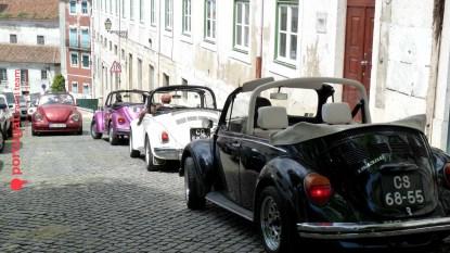 VW Beetle Ralley