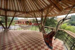 Coffee Hacienda