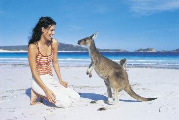 Hand feeding a Kangaroo