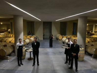 Gala Dinner in a Winery, Mendoza