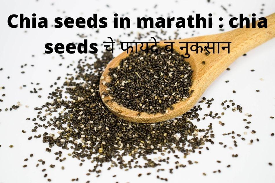 चिया बियाण्याचे फायदे: benefits of Chia seeds in marathi