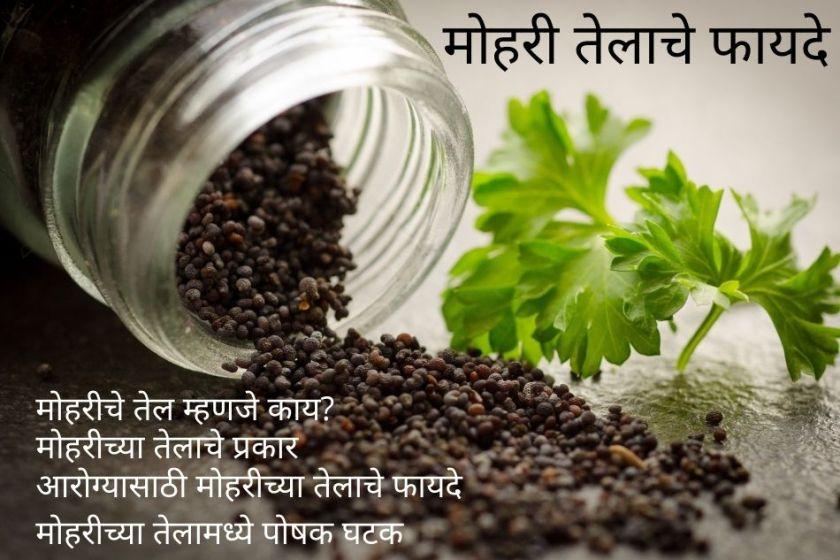 Mustard oil in marathi