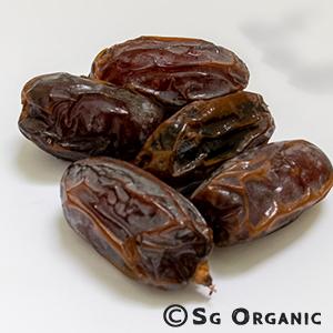 dates_sgo