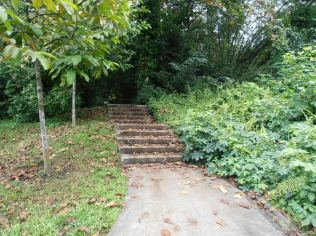 Starting point and first flight of steps leading to our greenfix walk-
