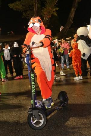 tiger mascot on inokim 4