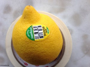 Grow a lemon tree in Singapore