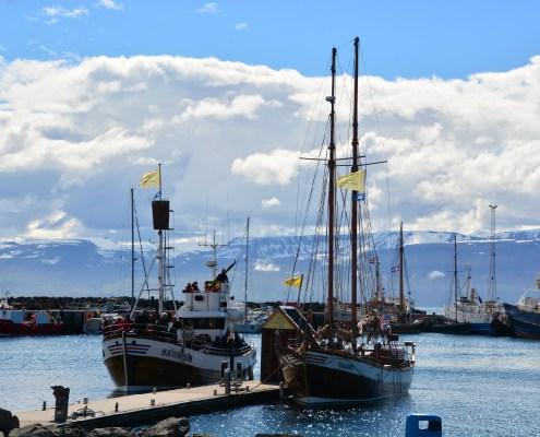 Islanda Husavik 2