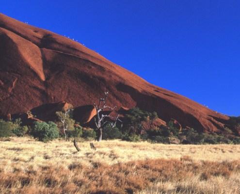 Australia: uluru lato