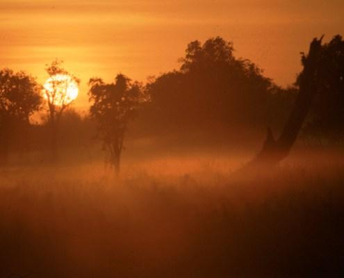 Australia: Kakadu