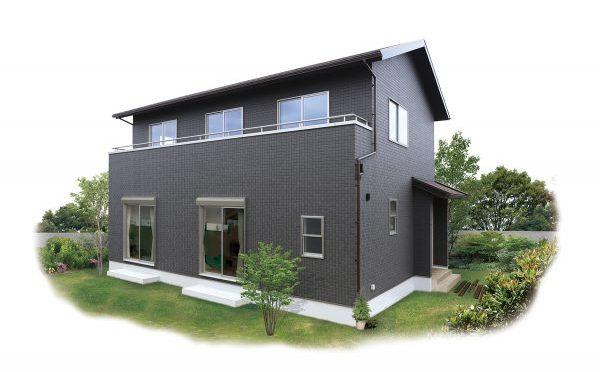 NAtural modern House