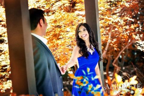 Descanso-Gardens--Kevin-Megha-Indian-wedding-venue-Descanso-Gardens