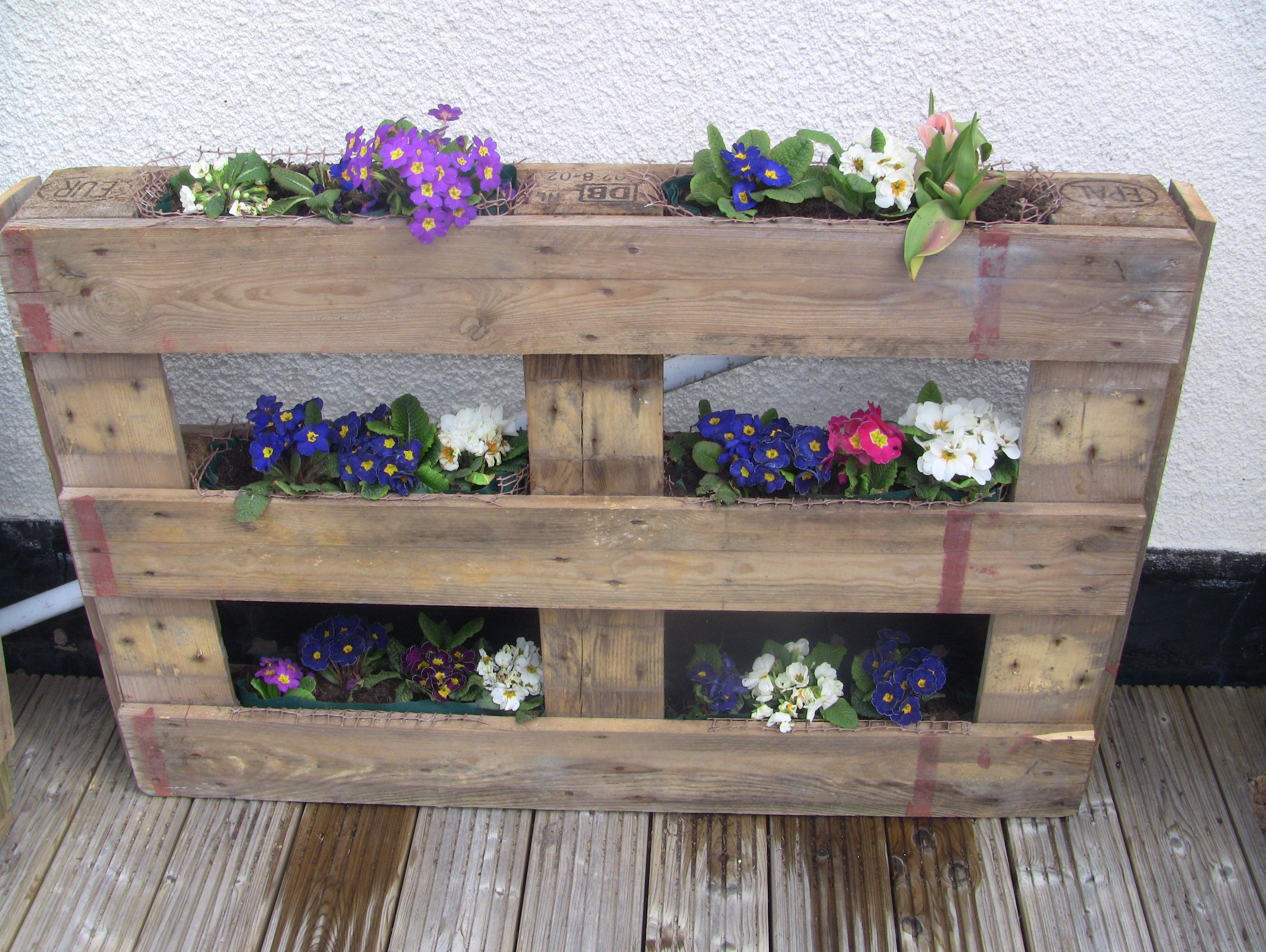 Upcycled Wooden Pallet - Vertical Gardening ideas | ShabbyShe on Pallet Design Ideas  id=38872