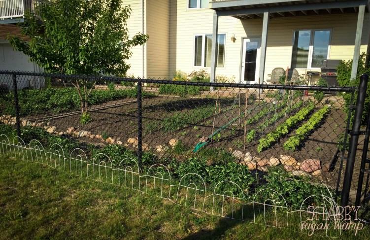 city garden yard