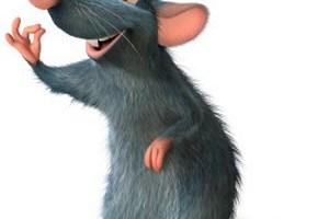 चूहा और मैं