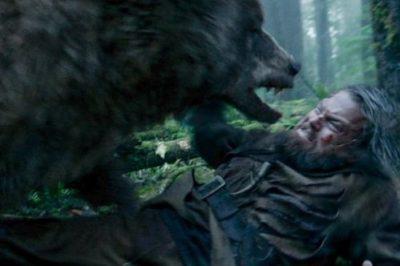लियोनार्डो डिकैप्रियो पर भालू का आक्रमण