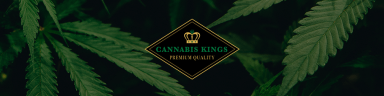 banner 200x800 cannabis kings