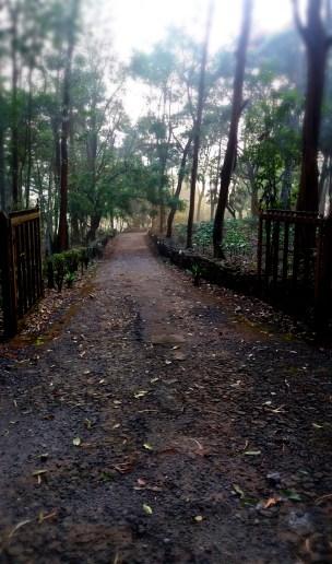 Pudhu Thottam, Valparai