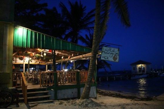 wild mango restaurant belize