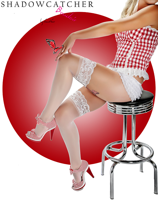 Vintage Pin-Up Calendar Girl Photography makes a comeback! San Diego Pin-Up Calendar Girl Photography (6/6)