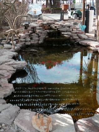 Carlsbad KOA Fish pond