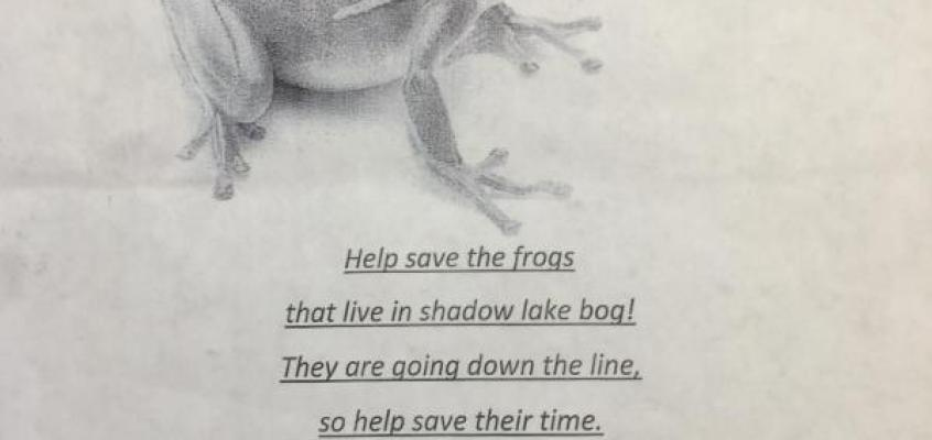 5th Grade Fundraisers: Pint sized Conservationists take on Full Grown Problems
