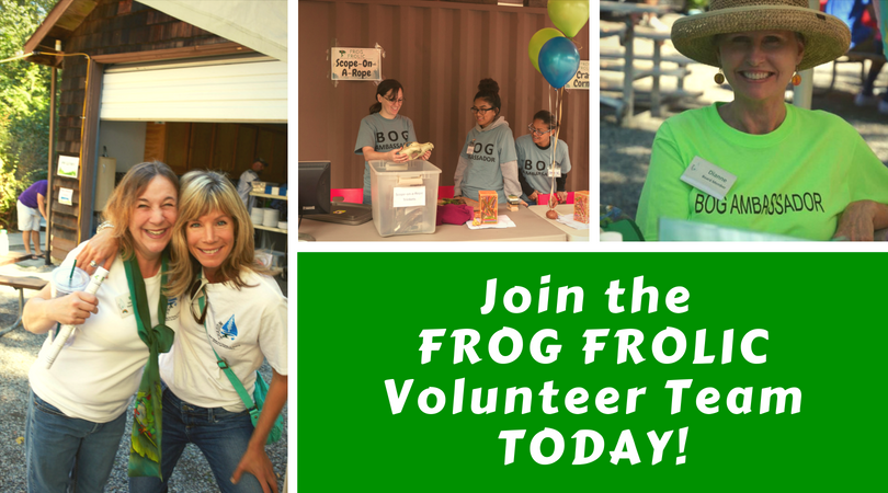 Join the Frog Frolic Volunteer Team, Today!