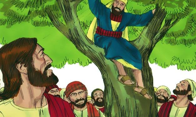 God's Ultimate Makeover: Zaccheus