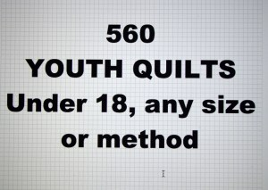 560-00.YOUTH QUILTS