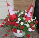Red & White Planter 2