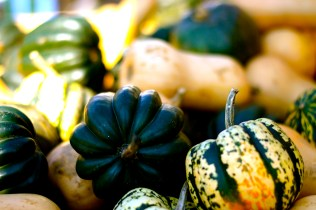 Fresh gourds at a Fall Farmer's Market in Charlevoix