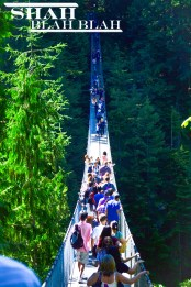 140 meter long Capilano Suspension Bridge in Vancouver