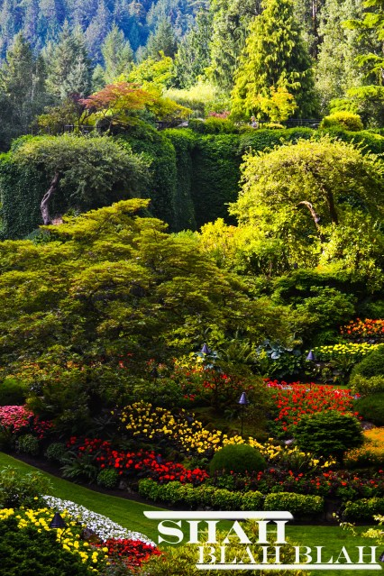 The famous Butchart Gardens in Victoria