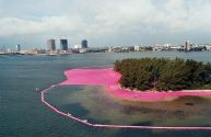 christo e jeanne surrounded island2