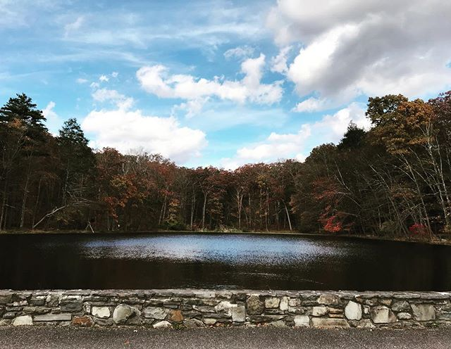 The nature never ceases to amaze you! #nature #lake #fallishere #fall #sky