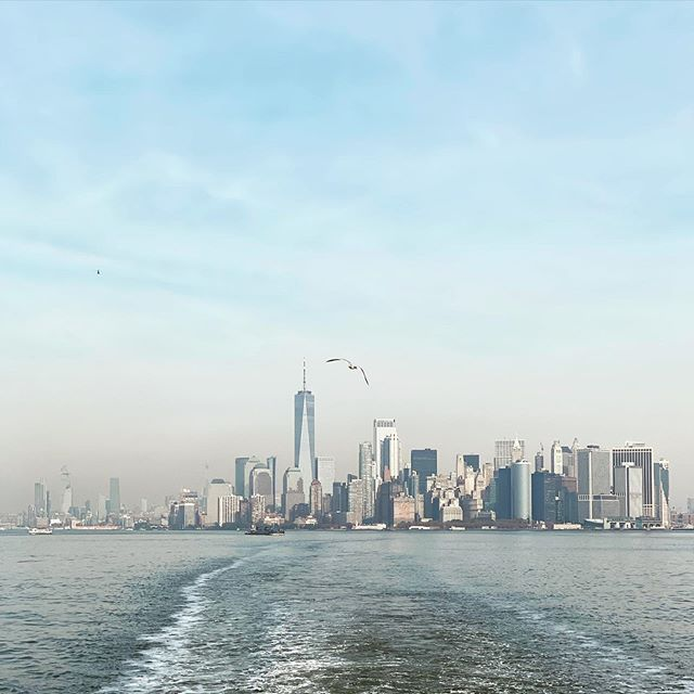 New York skyline, never fails to amaze!. . . . . . #travel #travelgram #globetrotter #skyline #nyc #water #bird #sky #color #ocean #atlanticocean #fly #ship #latergram #digitalnomad #traveldiaries #newyork