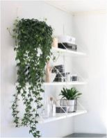 Life Plant Decorations for Indoor in Vertical Hanging Pots Part 42