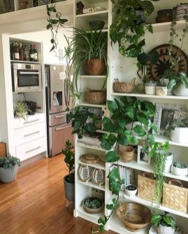 Life Plant Decorations for Indoor in Vertical Hanging Pots Part 54