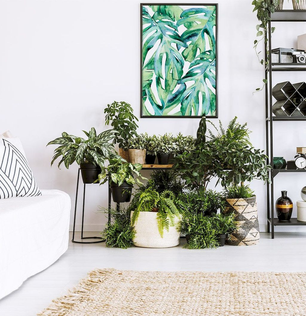 Life Plant Decorations for Indoor in Vertical Hanging Pots Part 61