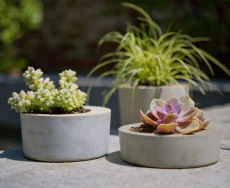 Amazing DIY Planter Ideas for inspiration Part 2