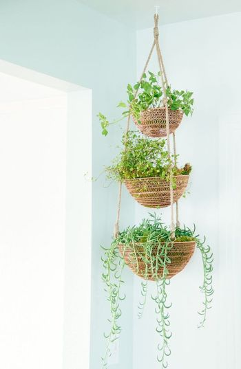 Amazing DIY Planter Ideas for inspiration Part 8